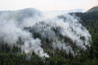 На кадрах видно сразу несколько крупных очагов пожара.