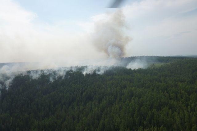 Сейчас в крае насчитывают порядка 170 лесных пожаров.