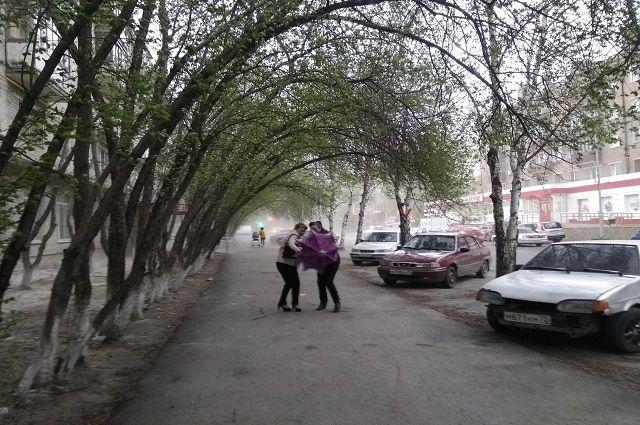 В Тюмени ливень повалил деревья и затопил дворы