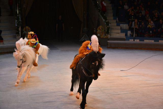 Билеты в улучшенный Рязанский цирк начнут торговать летом