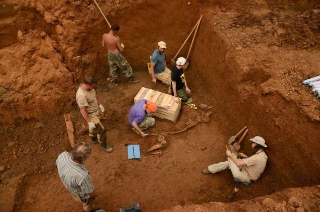 Раскопки начались неделю назад.