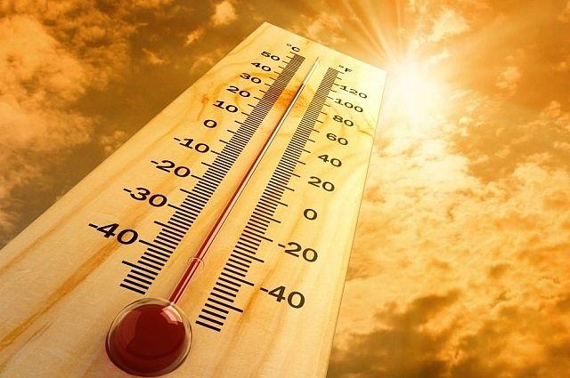Погода будет жаркой.