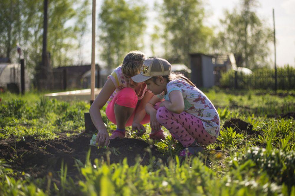 А садоводы - любители тем временем проводят время на собственных приусадебных участках.