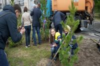 Более сотни деревьев посадят в Новом Уренгое взамен спиленных
