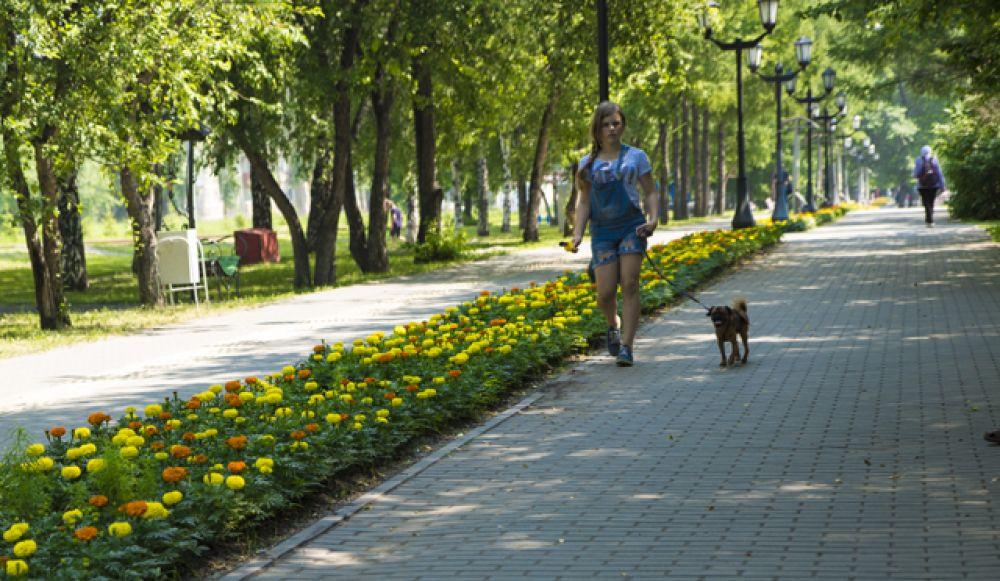 Люди не упускают возможности прогуляться и подышать свежим воздухом.
