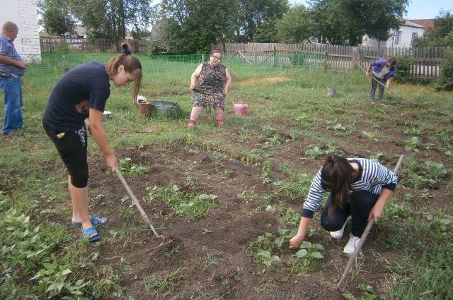 Волонтеры помогли посадить картошку и овощи