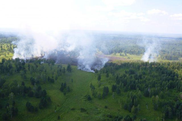 Горит 531,4 тысячи гектаров леса.
