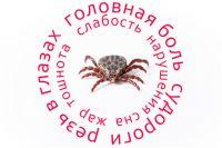 В Тюменской области зафиксировали 34 случая энцефалита