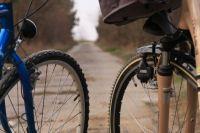 В законодательстве для велосипедов нет требований по допуску к дорожному движению.