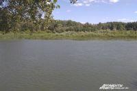 В Бузулукском районе  в реке Домашка найдено тело мужчины.