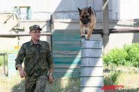 Беста тренируется со своим кинологом Сергеем Николаевым.