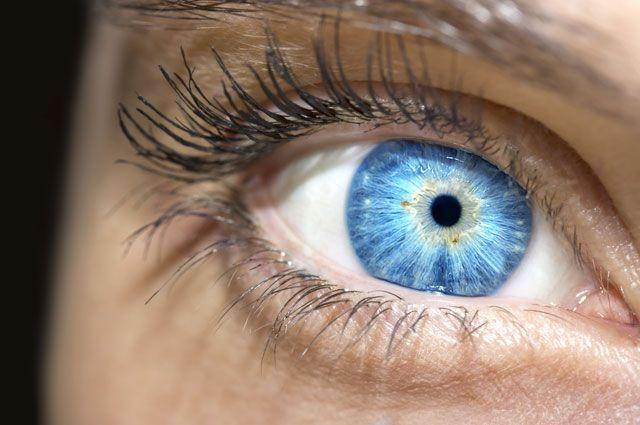 Морковка не поможет. Методы лечения, которые не спасут ваше зрение - Real estate
