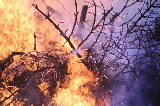 Пожар тушат 30 человек