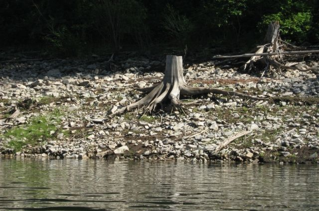 Вода в реке Енисей не прошла проверку экологов