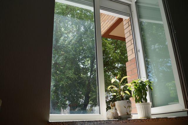 На подоконник лучше поставить предметы или цветы, которые будут препятствовать прямому доступу к окну