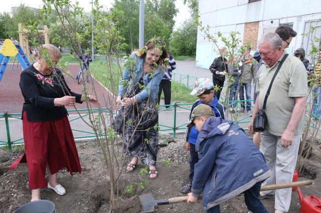 Победители смогут реализовать все свои идеи по озеленению.