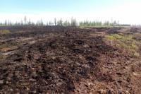 Тундровой пожар надымчане тушили с помощью специального квадроцикла
