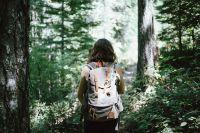Проект «Музей леса Югры» направлен на объединение лесных уголков одной тематикой.