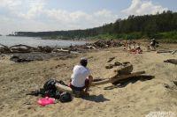 В районах Омской области действует лишь один пляж, где купаться разрешено.