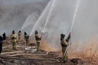 В горящих лесах порядок наводят тоже пожарные.