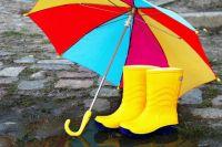 Синоптики прогнозируют «тропические дожди» в Украине
