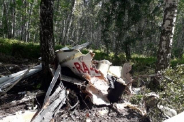 За штурвалом самолета находился  томский бизнесмен
