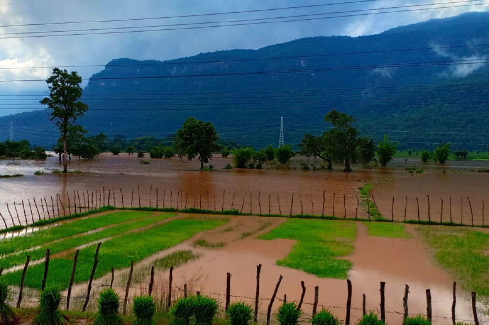 Затопленные поля в Аттапы после разрушения дамбы.