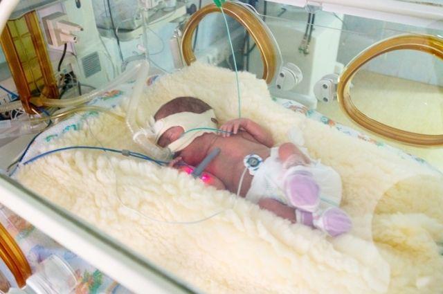 Самый маленький ребенок, которого выходили в ОКБ, родился весом 490 грамм.