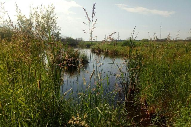 Следователи напоминают тюменцам о правилах поведения на водоемах