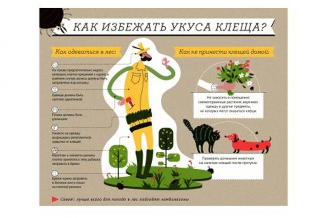 Вмедучреждения региона обратились 4,3 тыс. пострадавших отукусов клещей