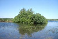 Это не берег, а один из самостоятельных островков.