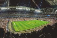 Эмоции от чемпионата «зашкаливают» не только у футболистов и зрителей.
