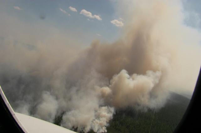 Лесные пожары в Ноябрьске заметил авиапатруль
