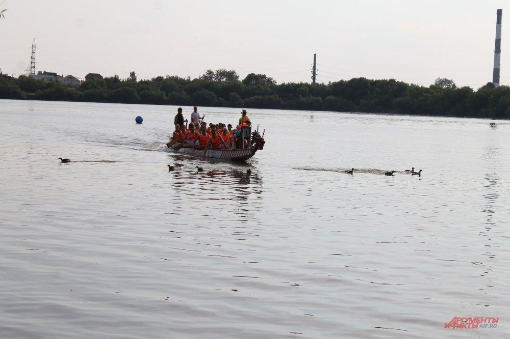 Лодки-драконы распугали уток
