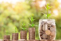 ВТБ начинает кредитование малого бизнеса в сегменте сельского хозяйства