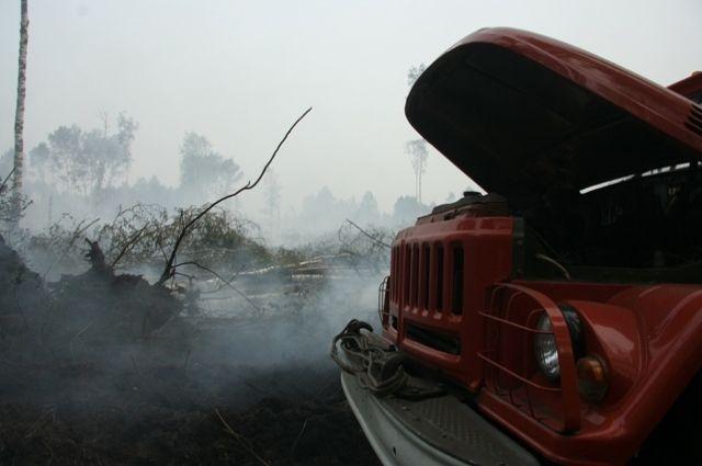 Тушить огонь выходят в том числе и добровольческие дружины.