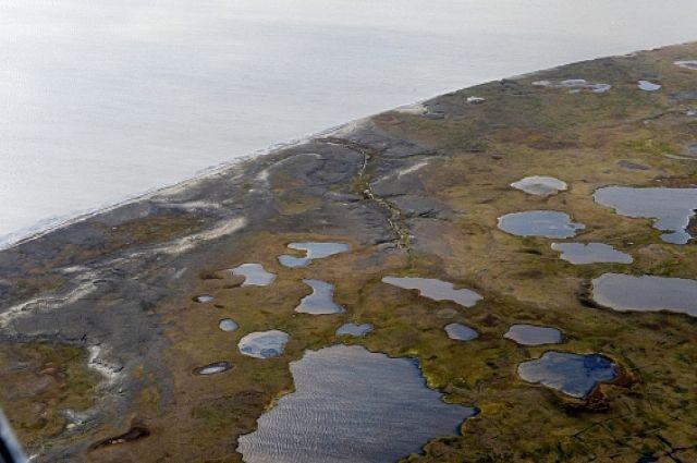 Добровольцы продолжают очистку ямальской Арктики