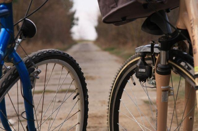 Обустроенное велосипедное кольцо появится в столице Югры.