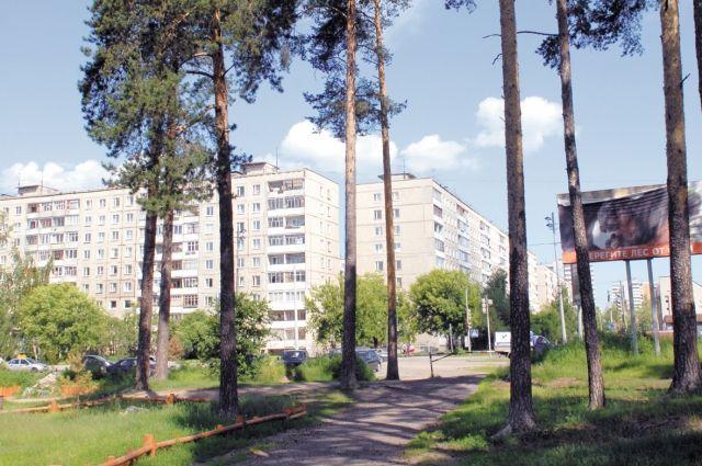 Пермяки могут взять шефство над парками и лесами.