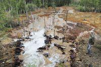 В среднем каждый год из старых шахт изливается до 15-25 миллионов кубометров ядовитой воды.