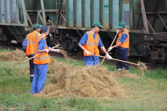 Самым старательным и трудолюбивым ребятам после окончания трудовой смены вручили грамоты