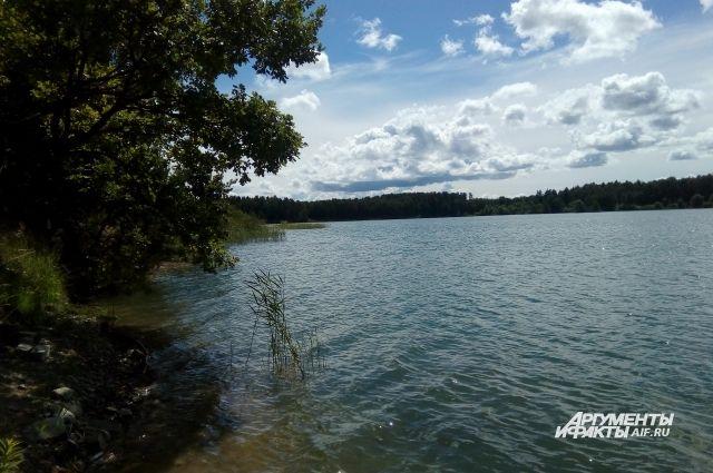В реке Кострома на пляже со спасателями утонул шестилетний мальчик.