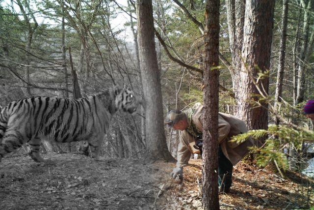 Нужно срочно менять Лесной кодекс, и прописать в нём права всех, кто пользуется дарами тайги.