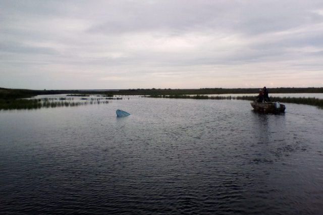 В Ямальском районе на Оби утонули мужчина и женщина