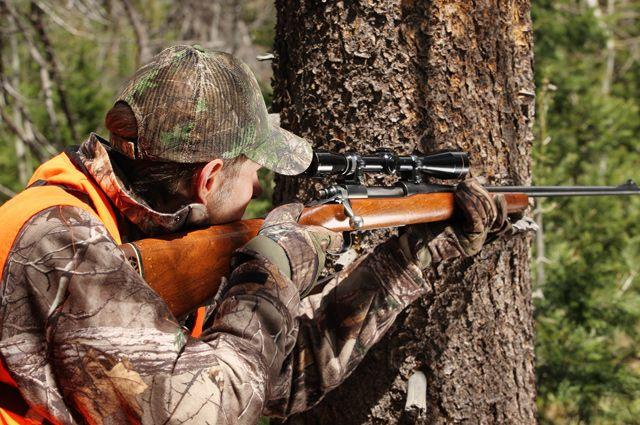 Ужесточение законодательства в сфере охоты