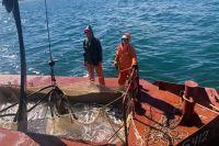 Летом «Громобой» доставляет в Петропавловск охлаждённого лосося.