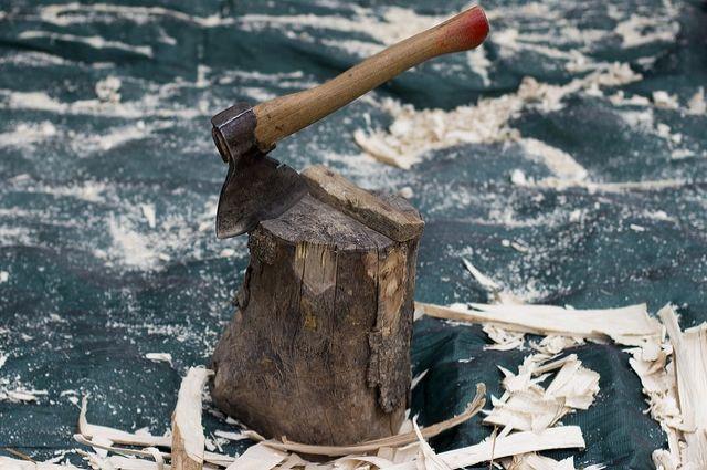 Печально, когда живые деревья превращаются в дрова, но не всегда этого можно избежать