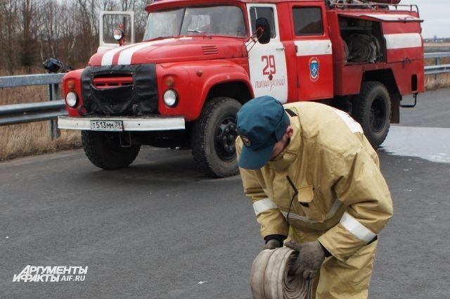 В лесах Владимирской области фиксируют риск возникновения пожаров.