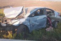 Водитель попала в аварию, пытаясь объехать собаку: в ДТП погиб сын женщины