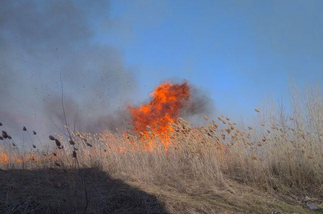Предупреждение очрезвычайной пожароопасности объявлено вРостовской области
